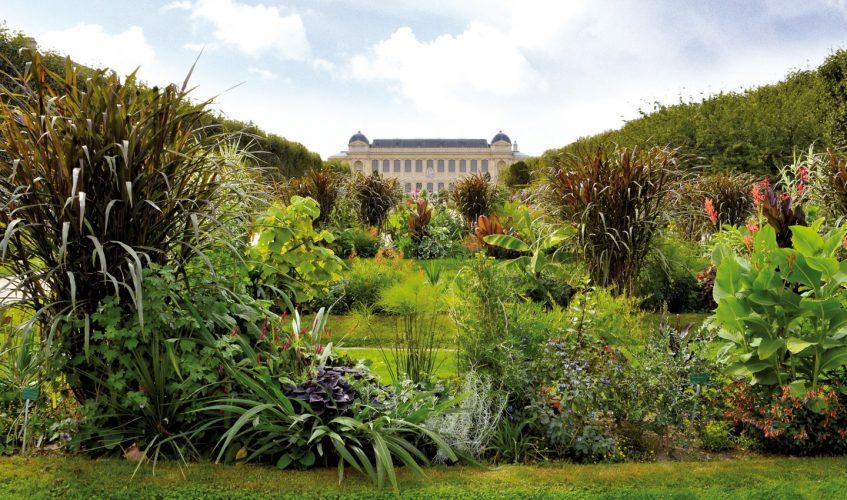 Comment protéger son jardin des nuisibles ?